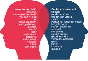 De linker en rechter hersenhelften