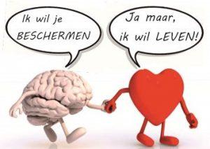 Brein en Hart in discussie