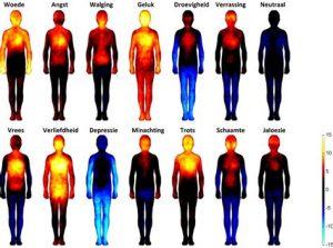 Emoties in het lichaam